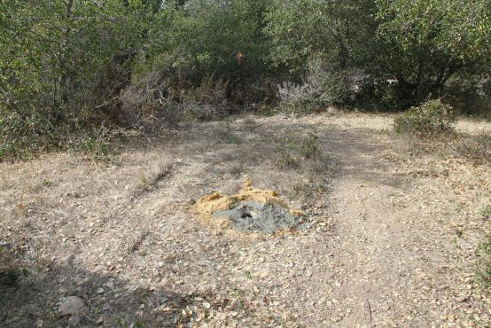 Tire tracks near the maritime chaparral (near the proposed wolf enclosure) and filled sampling hole