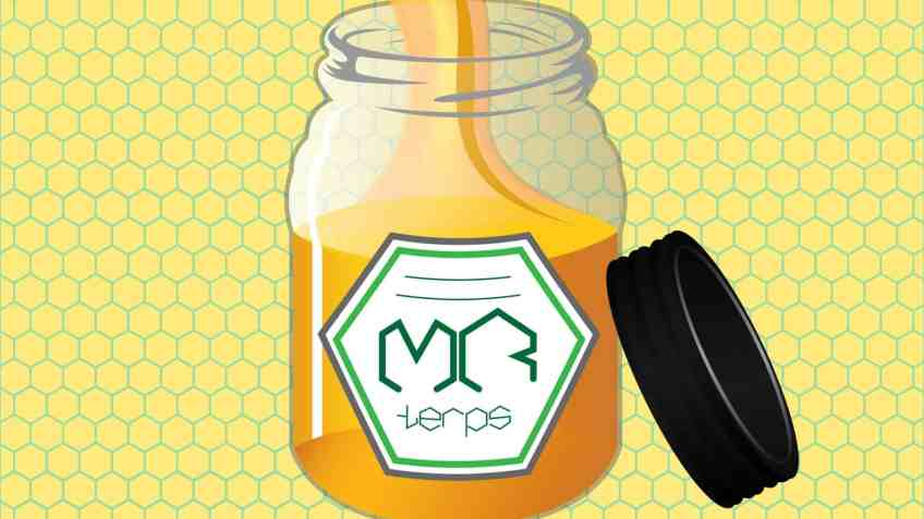 Mr. Terps - Coupon Code - Cannabis Terpenes Shipped Worldwide
