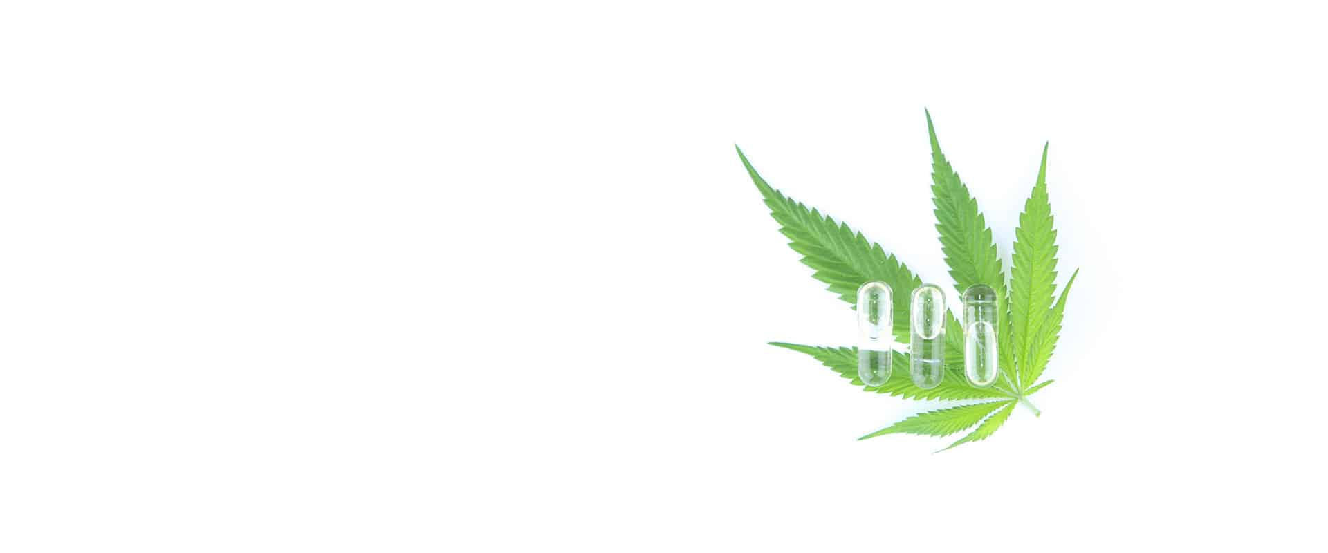 Infinite CBD Coupon Code - Online Discount - Save On Cannabis