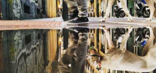 Lihat Foto Genangan Air Hujan Yang Menakjubkan Menggunakan Smartphone