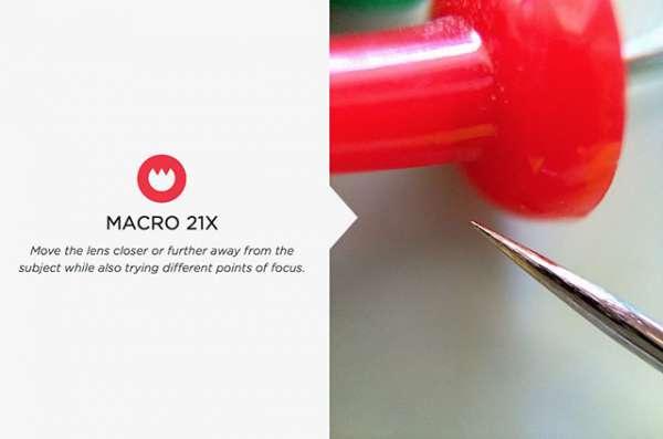 Mengenal Lebih Jauh Tentang Foto Makro