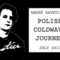 Savetier's Coldwave Journey