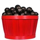 Panier d'Escargots de Bourgogne Chocolat noir praliné 1Kg