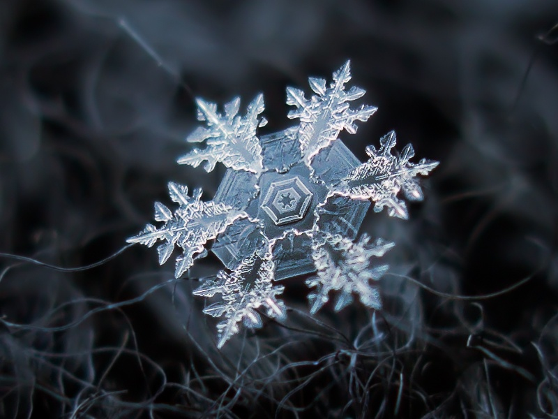 flocon neige 10 Images insolites : Flocon de neige