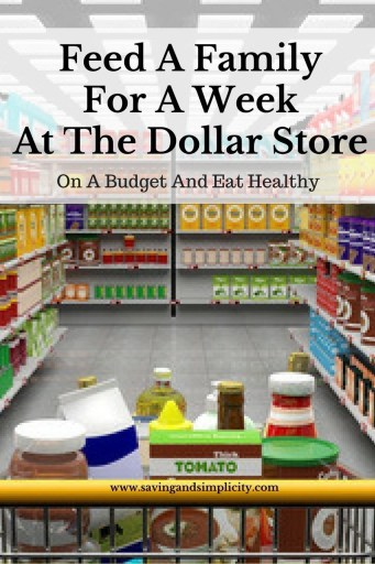 feed family dollar store budget