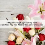 15 High Paying Legit Survey Sites That Will Pay You Money For Your Opinions
