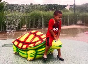 Turtleswim 300x218 normal no es necesario