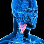 Important Guidelines to Consider For Your Thyroid Care