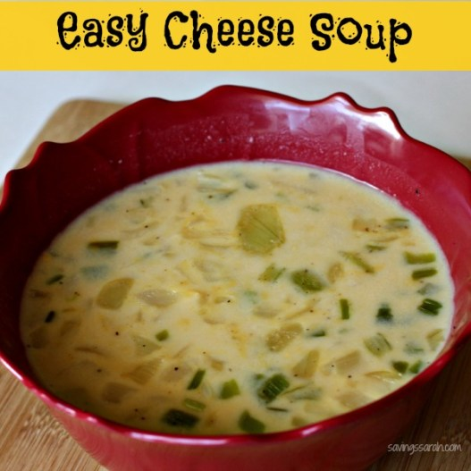 Easy Cheese Soup