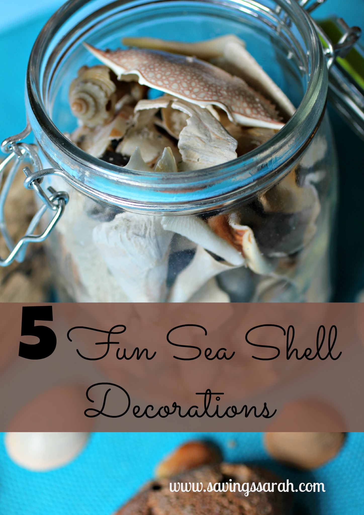 5 Fun Sea Shell Decorations