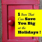 One Item That Can Save You Big at the Holidays!