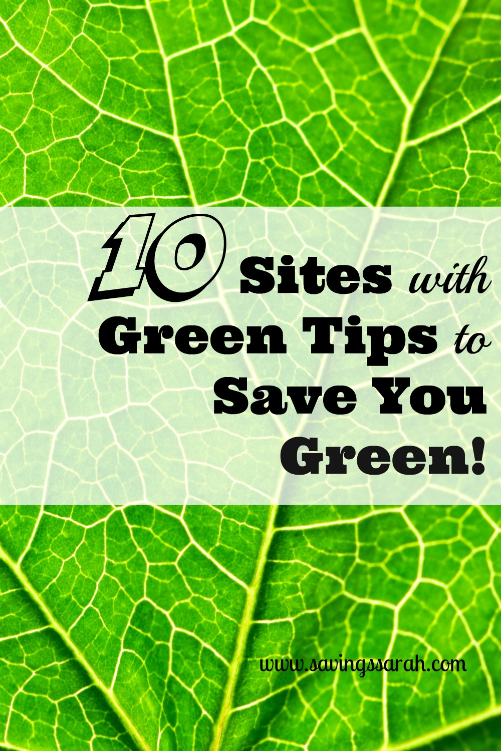 10 Sites with Green Tips to Save You Green!