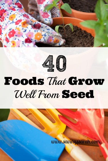 40 Foods That Grow Well From Seed