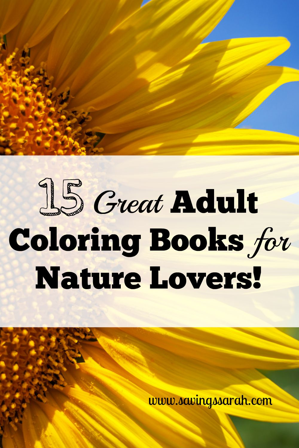 15 Great Hair Updos For Thanksgiving: 15 Great Adult Coloring Books For Nature Lovers