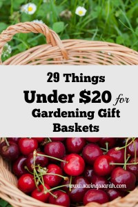 29 Clever Things Under $20 for Gardening Gift Baskets