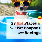 23 Hot Places to Find Pet Coupons and Savings