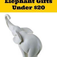 20 White Elephant Gifts Under $20