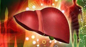 Bolesti jetre – savjeti za prehranu