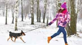 Najbolje čizme za zimu