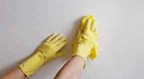 Čišćenje i održavanje zidova