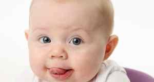 beba plazi jezik