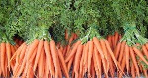 zdrava namirnica mrkva