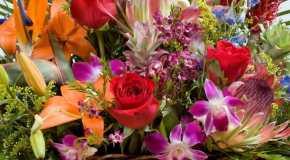 Koje cvijeće pokloniti