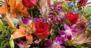 lijepo cvijeće