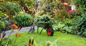 Kako naoštriti škare za vrt