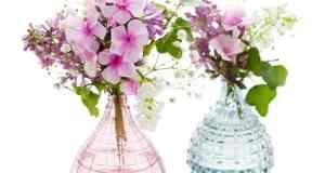 rezano cvijeće