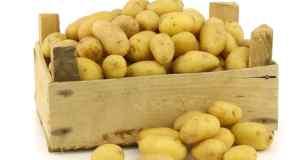 Liječenje sokom od krumpira