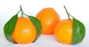 ulje mandarine