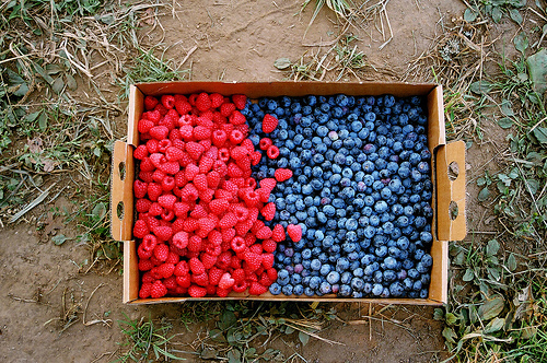 strawberries-blueberries-bag-beautiful-food-vintage-photo-photography-sweet-hungry-Favim.com-461945