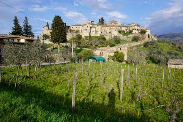 The town of Montefioralli