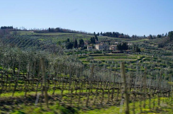 Villa Bordoni in the distance