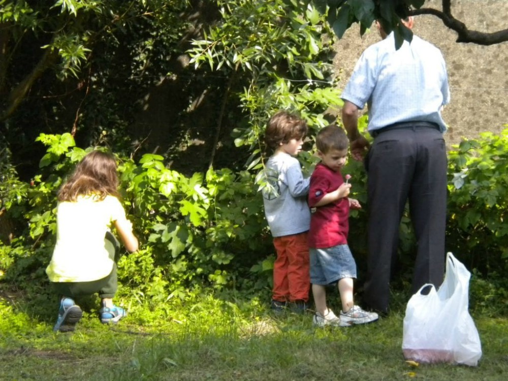 image of children picking berries with a nonno