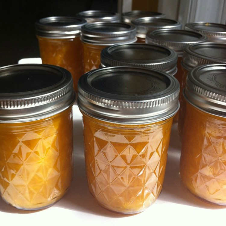 overhead image of fruit jam in canning jars