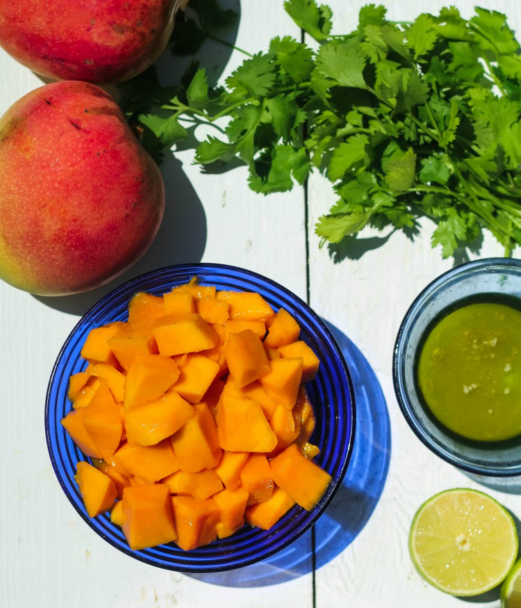 overhead image of ingredients to make mango salsa