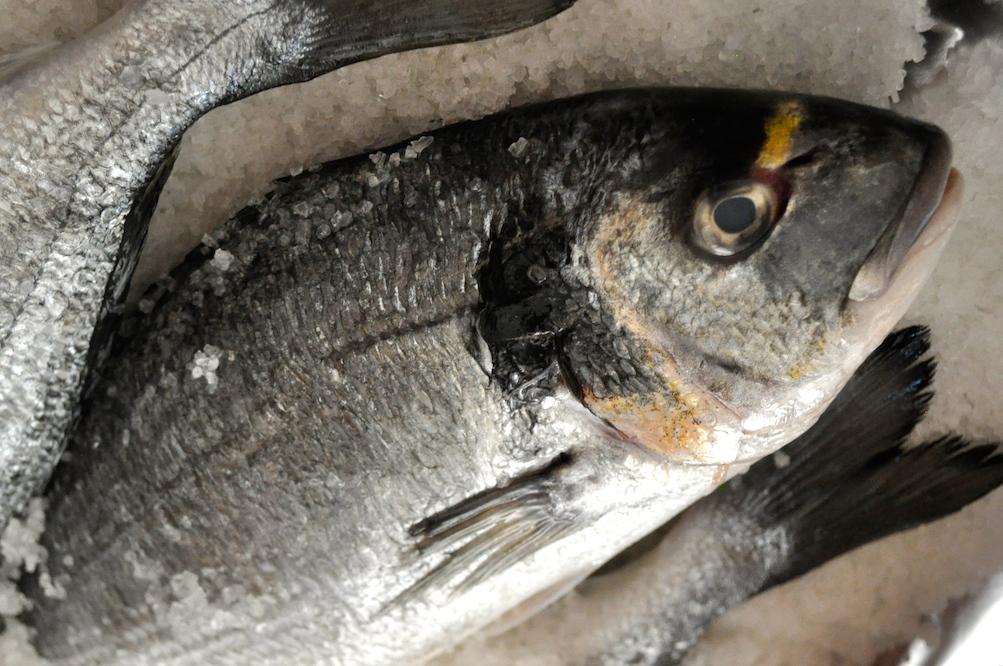 sea bream cooked in sea salt