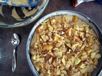 gâteau de pessah aux pommes et noix   www.savormania.com