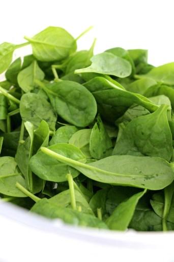 spinach pesto and mozzarella pasta bake   www.savormania.com