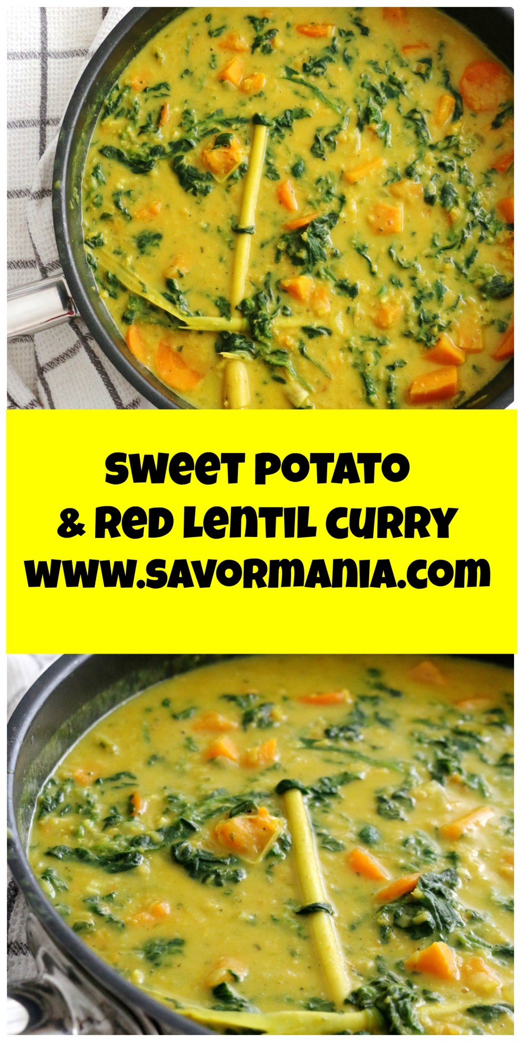 sweet potato and red lentil coconut curry | www.savormania.com