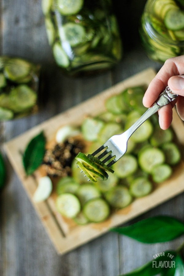 forkful of refrigerator dill pickles above a wooden cutting board