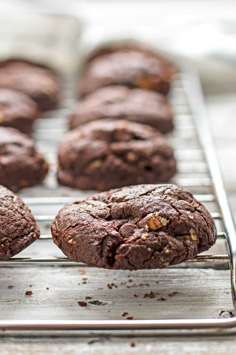 These soft and chewy Double Chocolate Hazelnut Cookies are full of chocolate, more chocolate and crunchy hazelnuts! You're going to want to make some of these because the recipe is easy to whip up and they're going to be a hit for sure! Adapted from Sally's Baking Addiction.