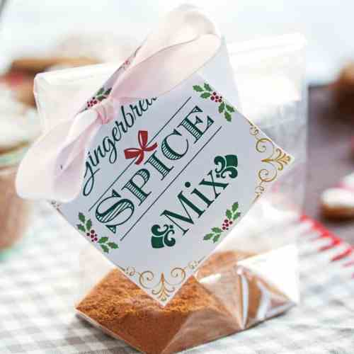 bag with gingerbread spice mix on a buffalo check napkin