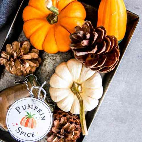 steel platter with pumpkins and a jar of pumpkin spice mix