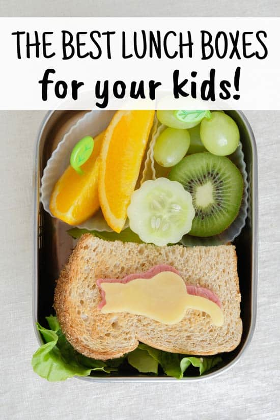 Best Kids Lunch Boxes for School Pin 1