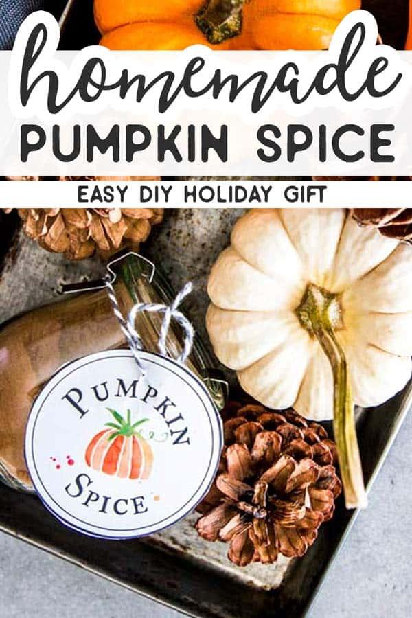 Pumpkin Spice Pin 2