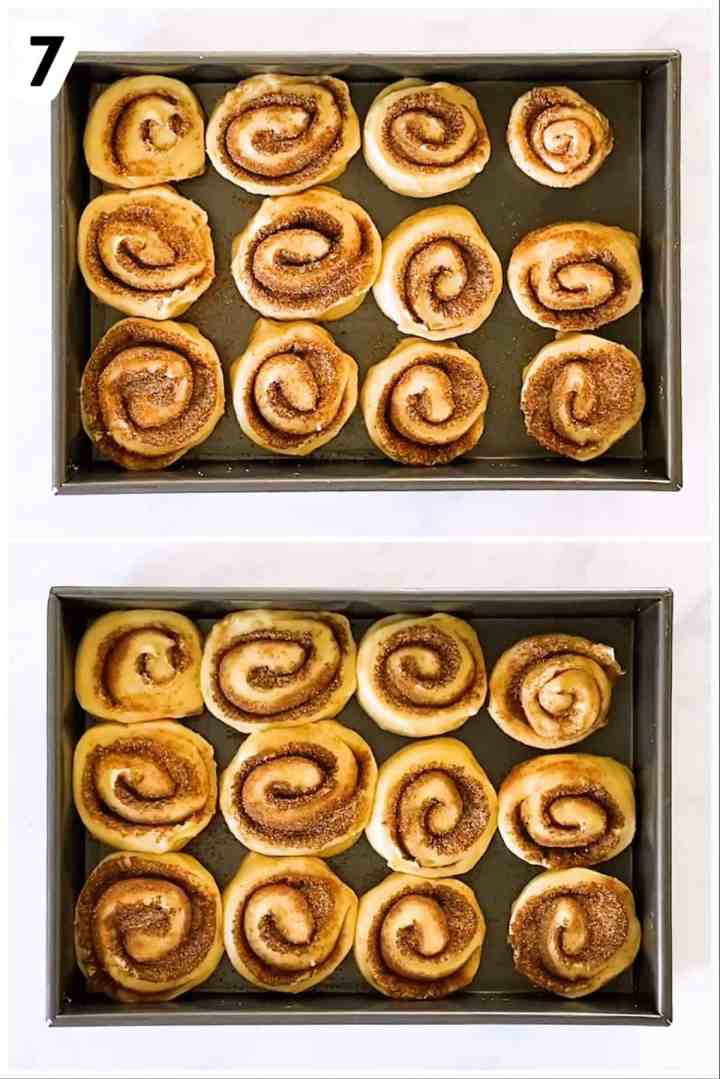 photo collage to show second rise of cinnamon rolls