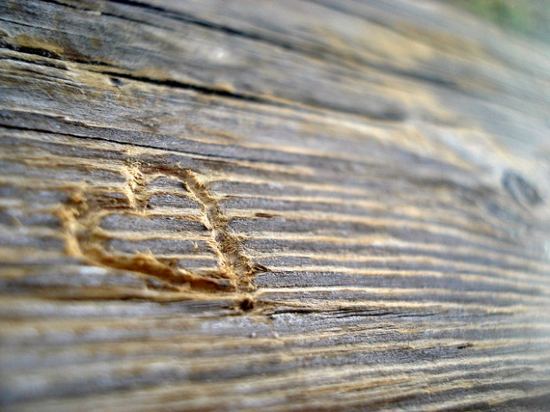 love language heart carved wood